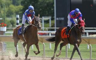 Tenant Race